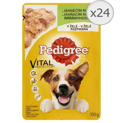 Imagine Pedigree Adult plic Miel, 100 gr.