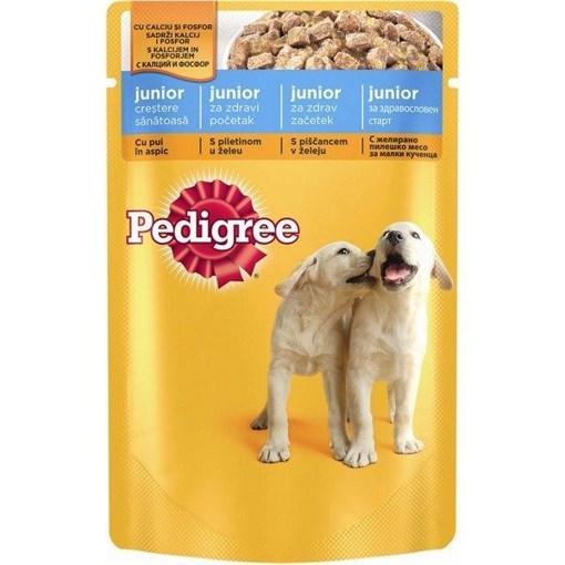 Imagine Pedigree plic Pui, 100 gr.