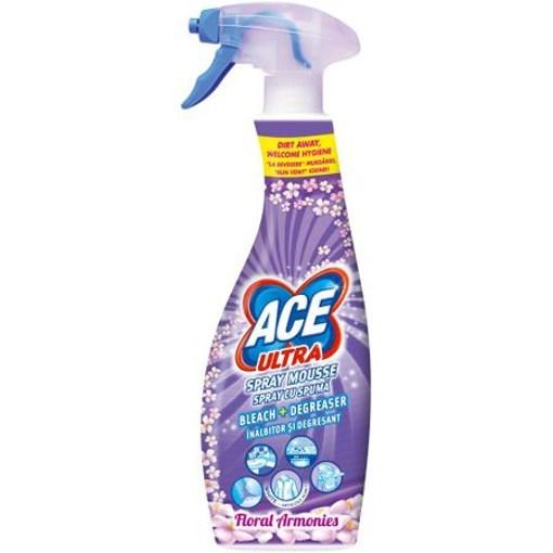 Imagine Ace Spray Spuma Florarl 700ml