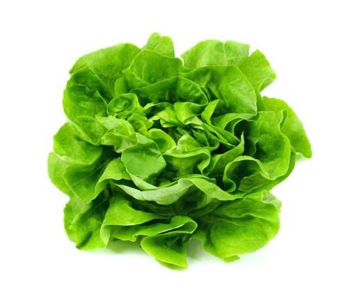 Imagine Salata, calitatea I, tara de origine: Romania - bucata