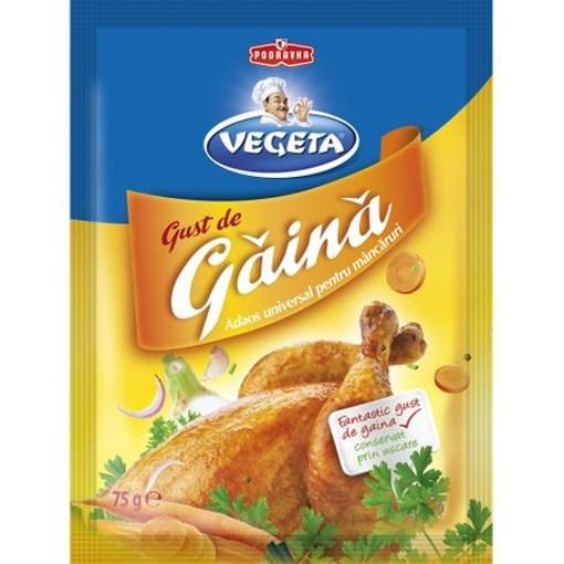 Imagine Vegeta Gust Gaina 75 grame
