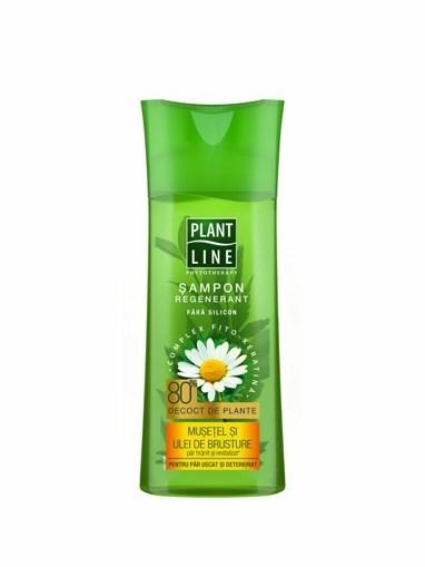 Imagine Plant Line Sampon Musetel, 250ml