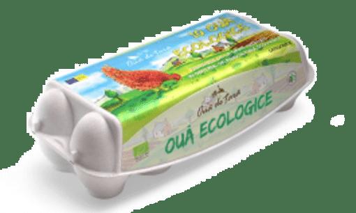 oua ecologice oua de tara
