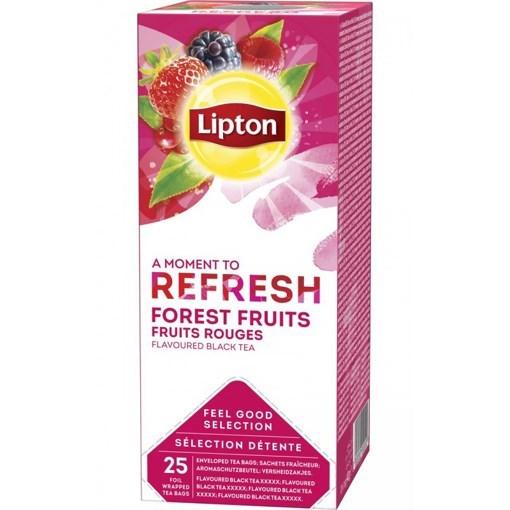 Imagine Lipton Fructe de Padure 40g