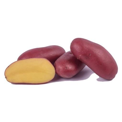 Imagine Cartofi rosii Franceline, tara de origine Franta