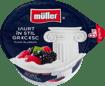 Imagine Iaurt Muller in Stil grecesc cu fructe padure 8% 140gr
